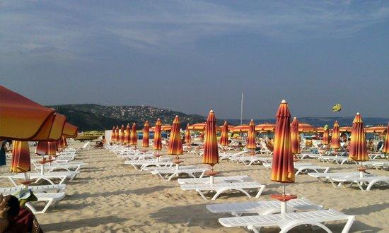 Hotel Laguna Garden: пляж