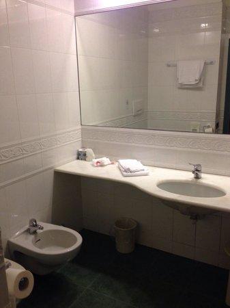 BEST WESTERN Hotel Genio : camera 412, bagno un pò spartano
