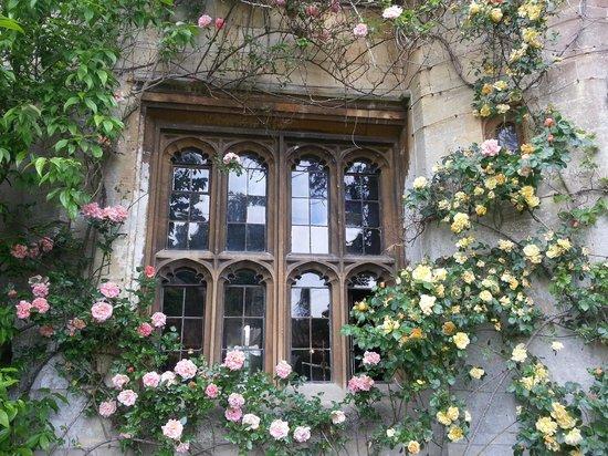 Thornbury Castle and Tudor Gardens: Exterior window