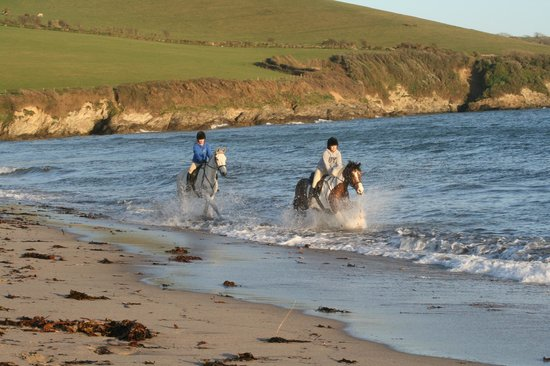 Chark Farm: Cantering on Par Beach a short trailer ride  from Chark