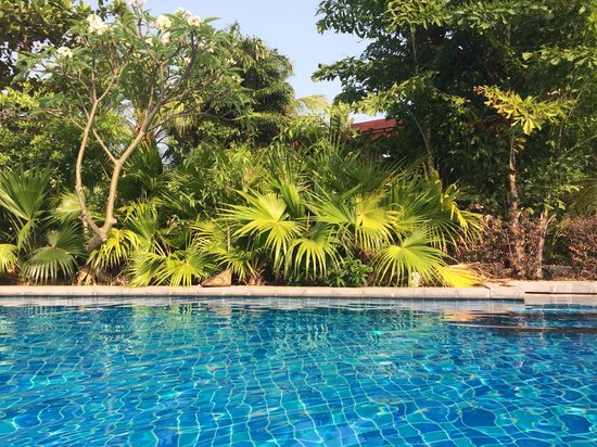 Renaissance Sanya Resort & Spa: Piscine au cœur d'un très beau jardin