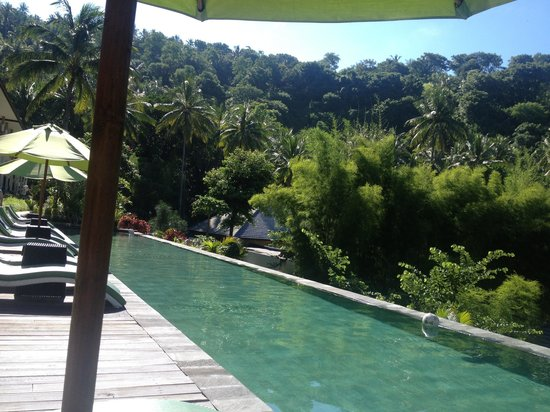 Kebun Villas & Resort: Inf pool