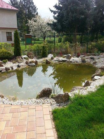 Villa Walir: садик с прудом