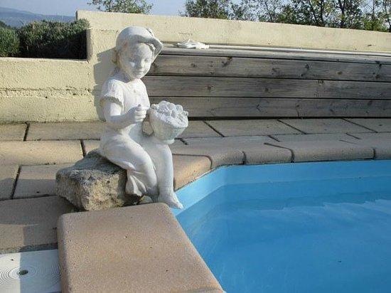 Chez Soi en Luberon : Visiteuse piscine