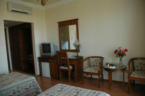 Altinkaya Holiday Resort: Hotel Room