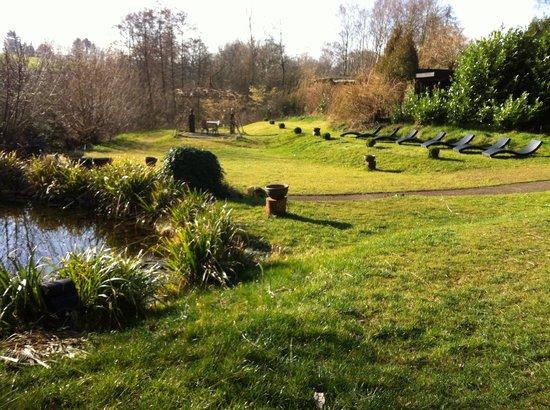 Hotel Land Gut Höhne : garden
