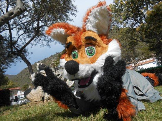 Cala Montjoi Ciudad de Vacaciones: Joi, nuestra mascota