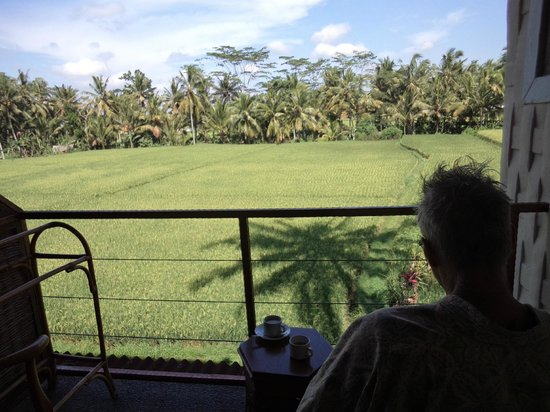 Junjungan Ubud Hotel and Spa: Over looking the rice fields