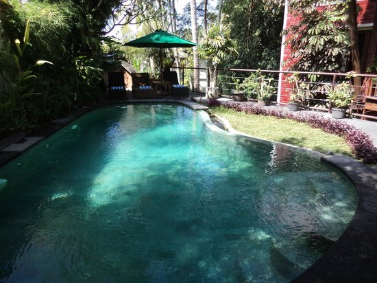 Junjungan Ubud Hotel and Spa: Very small pool area