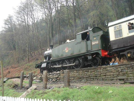 Dean Forest Railway: Steam along the line