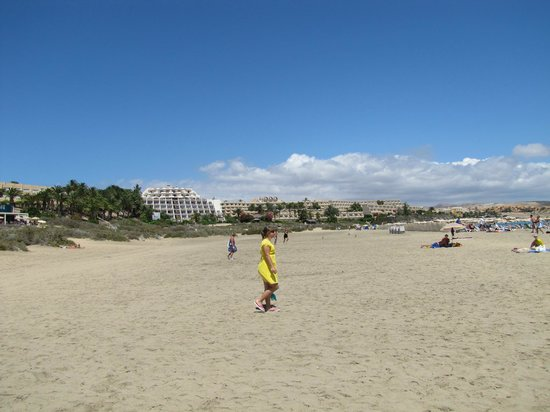 SBH Monica Beach : plaża