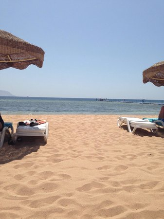 Baron Resort Sharm El Sheikh: The view from my sun lounger