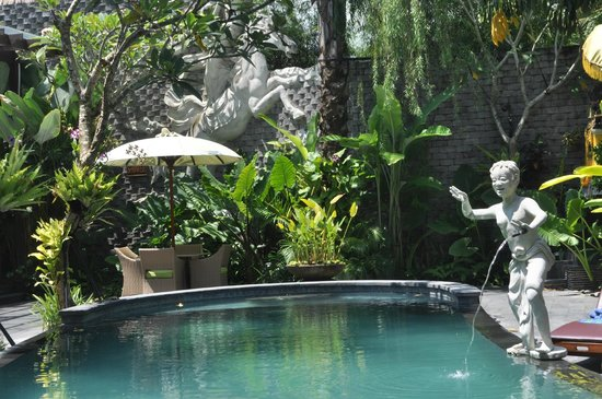 The Bali Dream Villa & Resort: the pool
