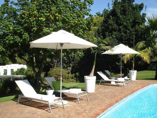 Rothman Manor : Pool Area