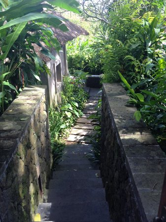 Maya Ubud Resort & Spa: Way to the room with garden
