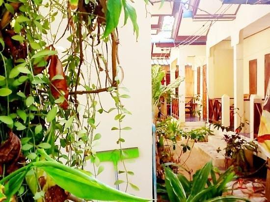 Wish Bungalow: secon row bungalows more economic