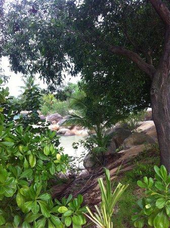 Shangri-La's Rasa Sentosa Resort & Spa: :)