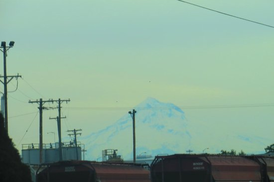 St. Johns Bridge : Mt Hood in the Distance