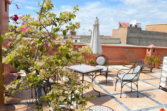 Riad l'Etoile d'Orient: Terrace