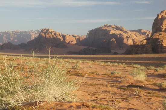 Wadi Rum Green Desert : sunrise a hundred metres from the tents