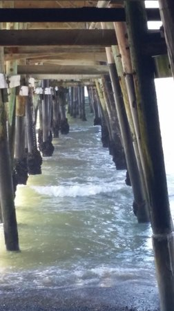 Four Seasons Pacifica: Beneath the San Clemente Pier
