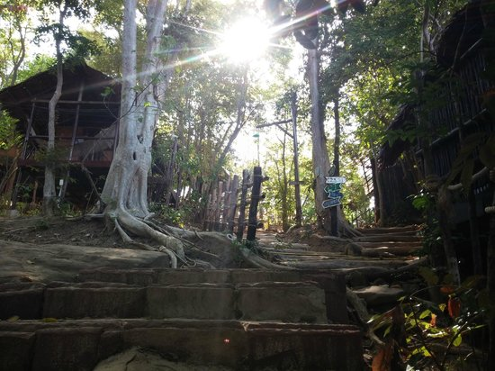 Viking Natures Resort : Steps to the bungalow