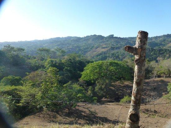 Las Alturas de Puriscal: Aussicht - in die Landschaft und zur Beobachtung von Dukanen, Papageien, Kolibris + Schmetterlin