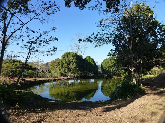 Las Alturas de Puriscal: Natur-Teich - daneben gibt es aber auch noch einen schönen Pool