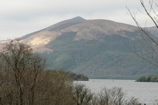 Friars Glen : Killarney National Park 2