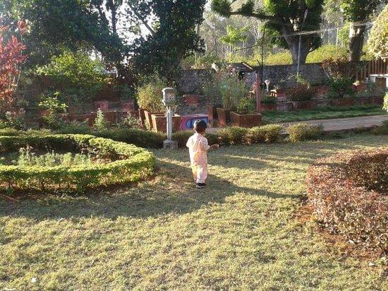 Zeenath Taj Gardens Yelagiri: My son having a gala time