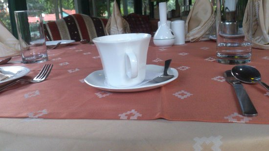 The Project at Park Balluchi: A cup of masala chai