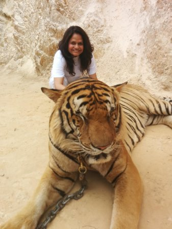Tiger Temple ( Wat Pa luang Ta Bua): Loved hanging with the tigers