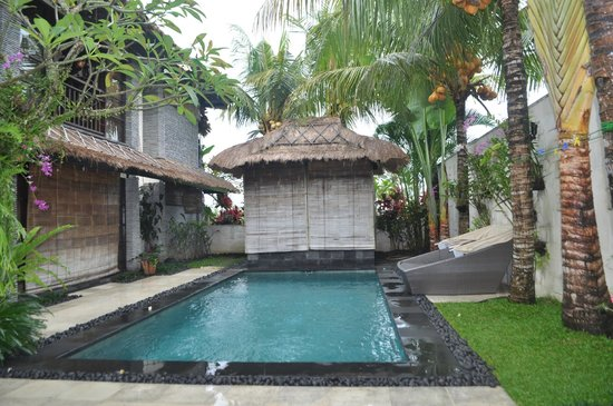 The Zala Villa Bali : the pool, during a morning drizzle