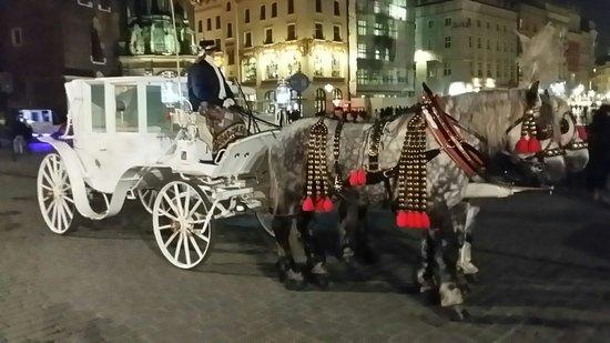 Rynek Główny : Una delle carrozze in piazza