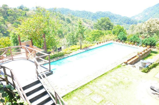View From Our Room Picture Of Wild Elephant Eco Friendly Resort Munnar Tripadvisor