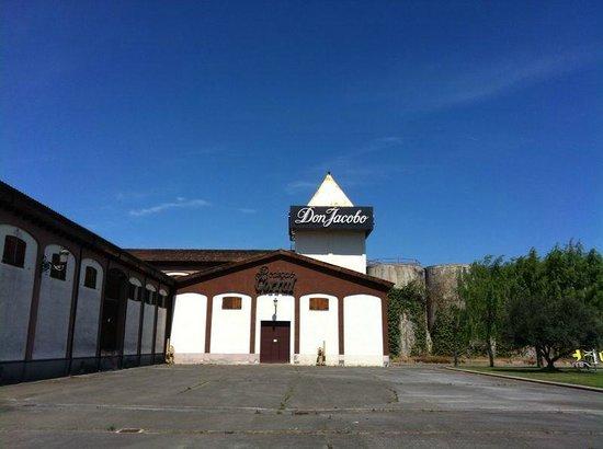 Enoturismo en Bodegas Corral : la torre de cobre