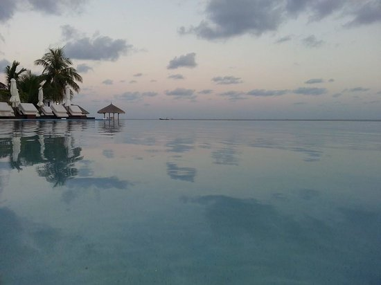Velassaru Maldives: Infinity pool around sunset