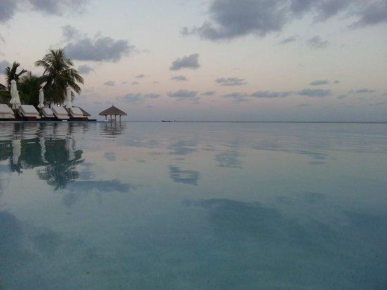 Velassaru Maldives : Infinity pool around sunset