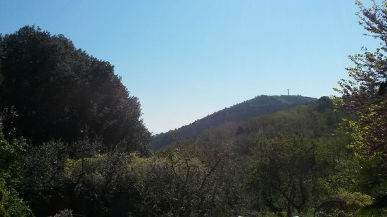 La Casa di Pietra: Vista dalla finestra - 1