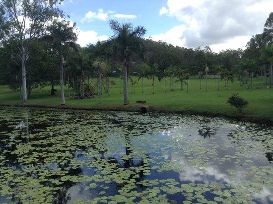 Cedar Lake Country Resort: Around the Cedar Lake Resort Grounds.