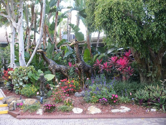 BEST WESTERN Naples Inn & Suites : Small portion of the Grounds