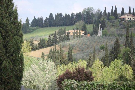 Ostello del Chianti : Hills