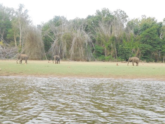 Evolve Back, Kabini: Boat Safari