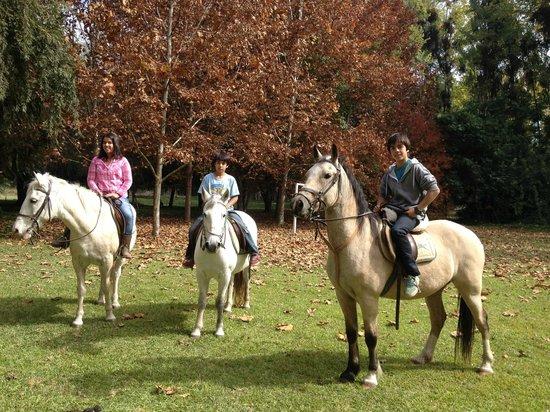 Santa Clara: montar a caballo