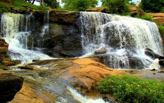 Falls Park on the Reedy : Falls on Reedy