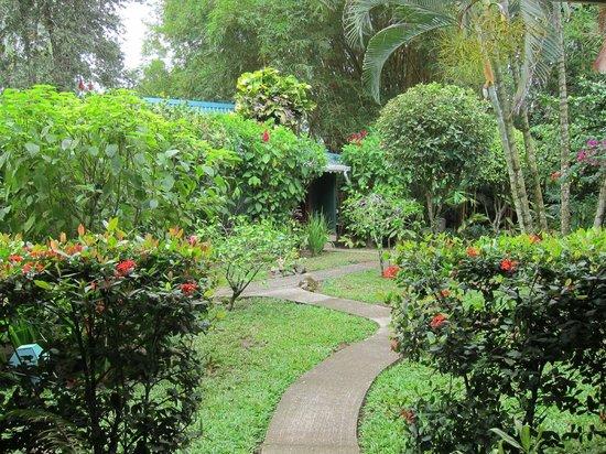 Playa Negra Guesthouse: garden