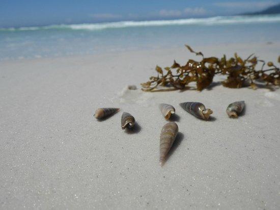 Pousada Laguna: playa foguete enfrente de pousada