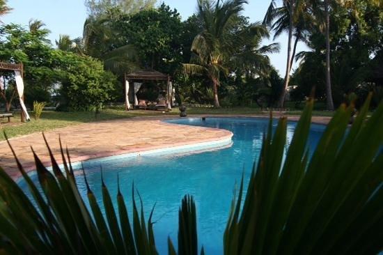Anna of Zanzibar: Pool
