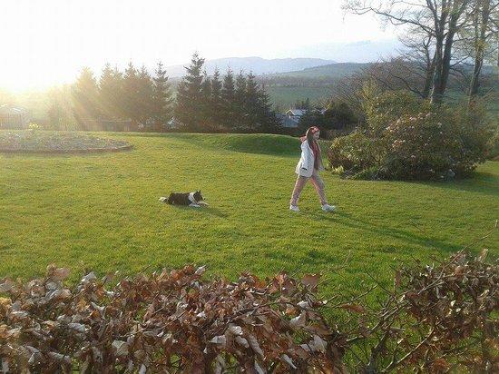 Braeburn Cottage: My Daughter and farm dog Jessie