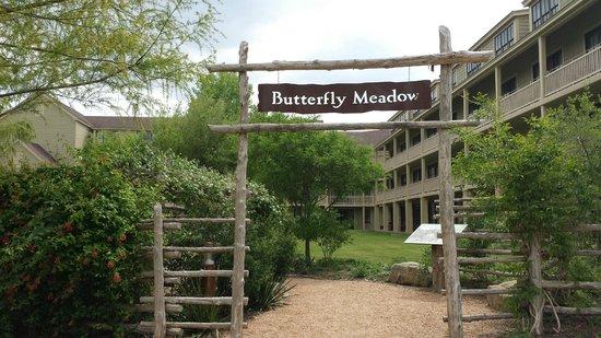 Hyatt Regency Lost Pines Resort and Spa : Butterfly garden